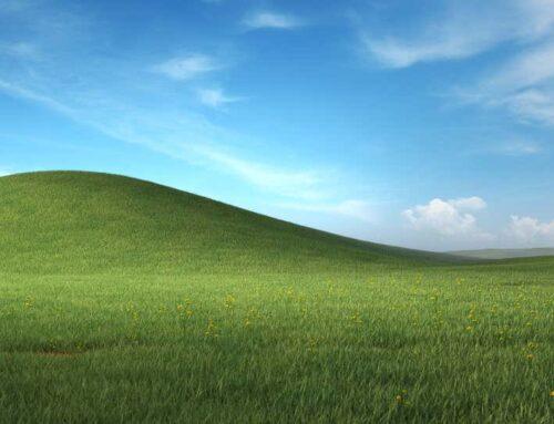Microsoft rellança el mític fons de pantalla de Windows XP, ara amb més flors i detalls